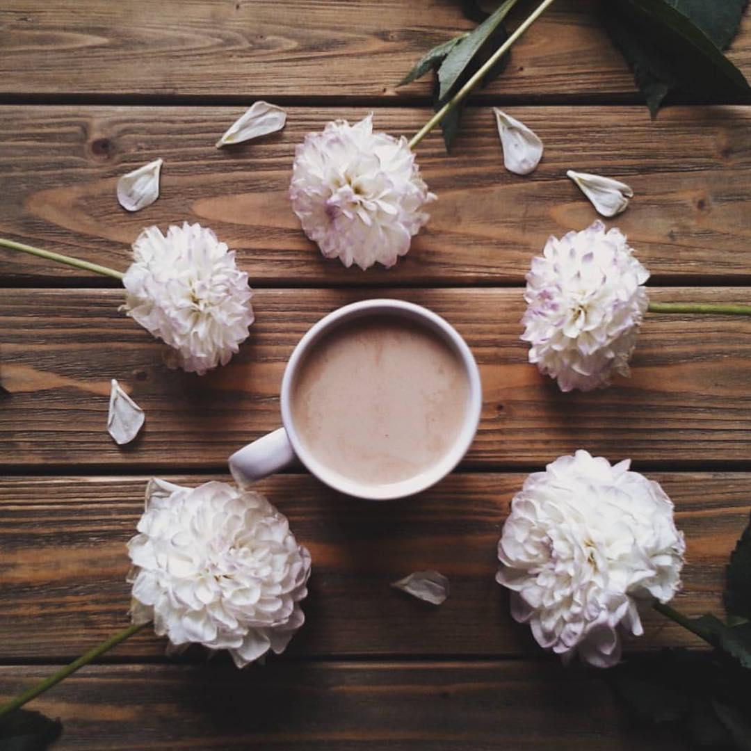 20170512 coffee flowers @imjustahuman